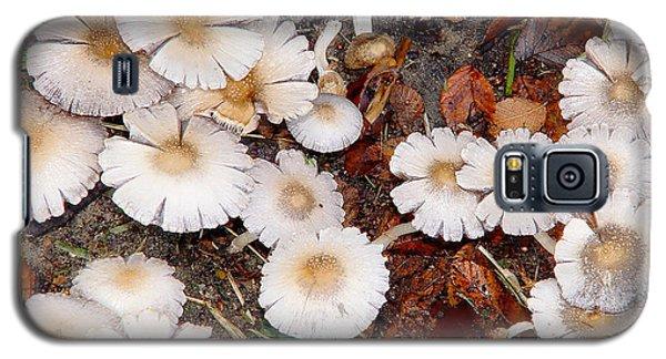 Morning Mushrooms Galaxy S5 Case