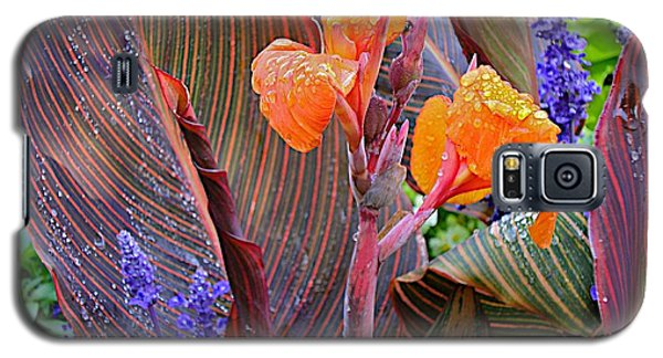 Galaxy S5 Case featuring the photograph Morning Rain by Joseph Yarbrough