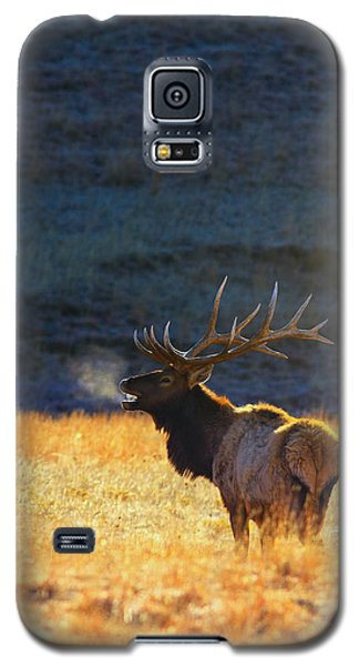 Galaxy S5 Case featuring the photograph Morning Breath by Kadek Susanto