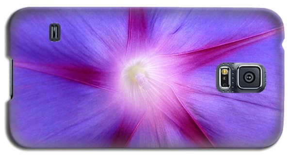 Galaxy S5 Case featuring the photograph Morning Star by Julia Ivanovna Willhite
