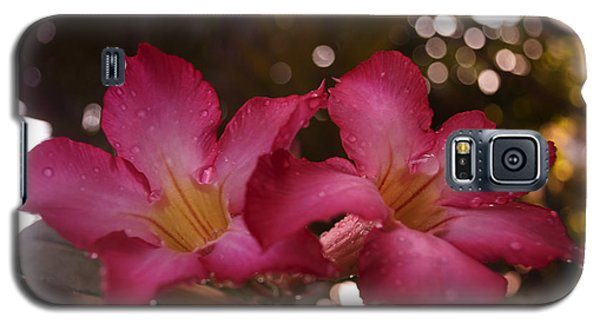 Galaxy S5 Case featuring the photograph Morning Sunshine And Rain by Miguel Winterpacht