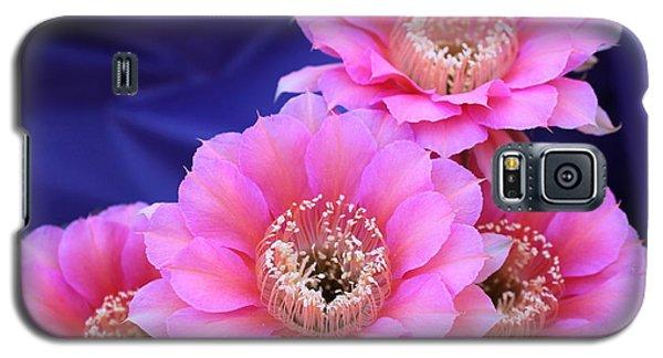 Morning Surprise Galaxy S5 Case