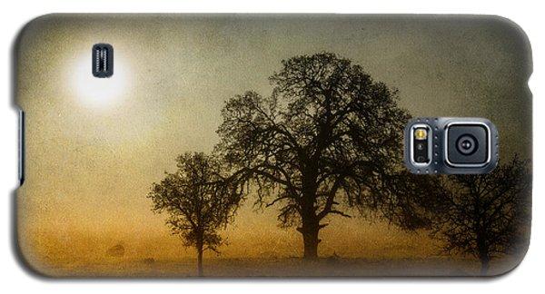 Morning Thaw Galaxy S5 Case by Randy Wood