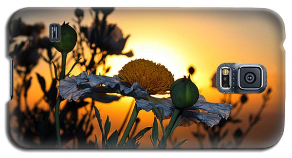 Morning's Glory Galaxy S5 Case by Richard Stephen