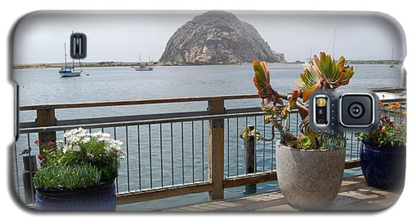 Galaxy S5 Case featuring the photograph Morro Bay And Plants by Debra Thompson