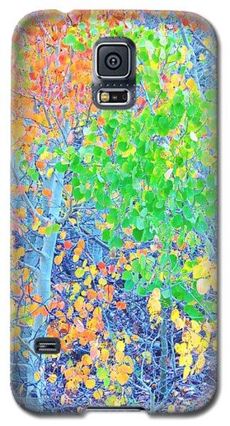 Mosaic Autumn Galaxy S5 Case