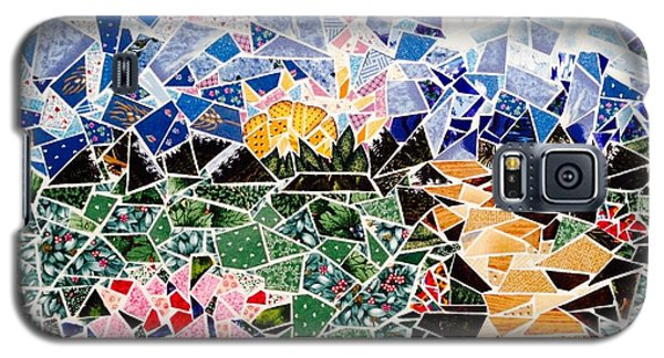 Mosaic Garden Path Galaxy S5 Case