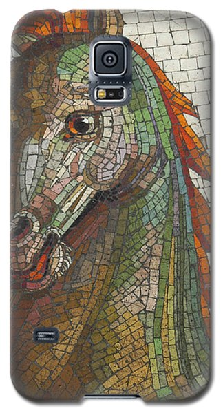 Galaxy S5 Case featuring the photograph Mosaic Horse by Marcia Socolik