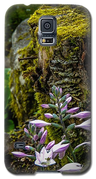 Moss And Flowers In Markree Castle Gardens Galaxy S5 Case