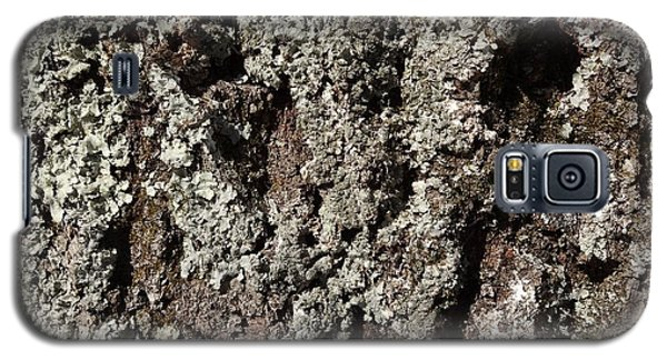 Galaxy S5 Case featuring the photograph Moss And Lichens by Jason Williamson