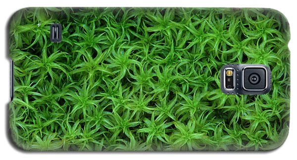 Galaxy S5 Case featuring the photograph Moss by Daniel Reed