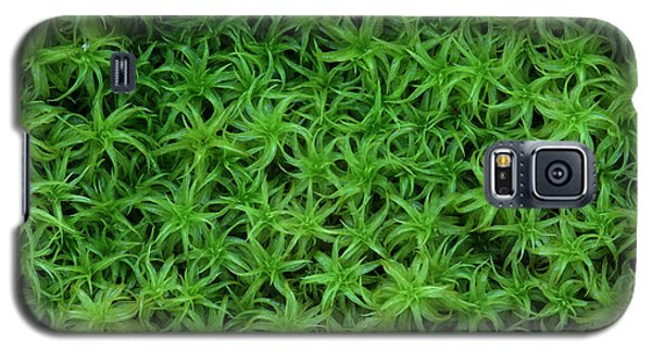 Moss Galaxy S5 Case by Daniel Reed