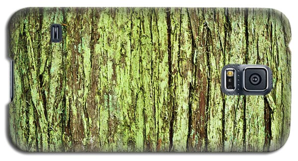 Moss On Tree Bark Galaxy S5 Case