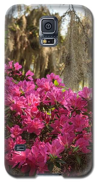 Galaxy S5 Case featuring the photograph Moss Over Azaleas by Patricia Schaefer