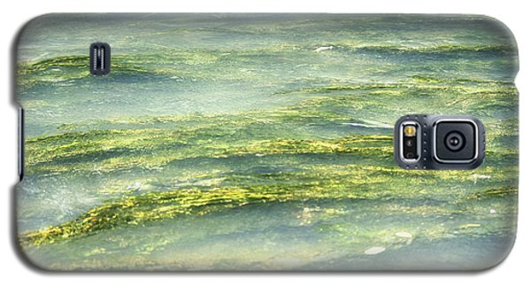 Galaxy S5 Case featuring the photograph Mossy Tranquility by Melanie Lankford Photography