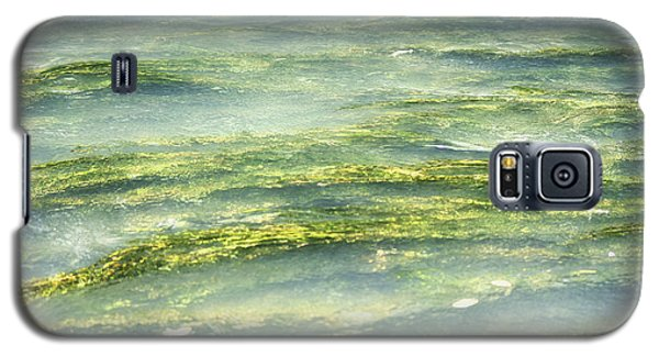 Mossy Tranquility Galaxy S5 Case by Melanie Lankford Photography