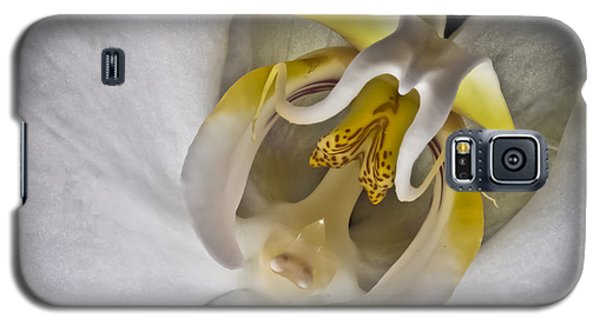 Moth Orchid Inverted Galaxy S5 Case