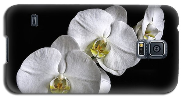 Moth Orchid Trio Galaxy S5 Case