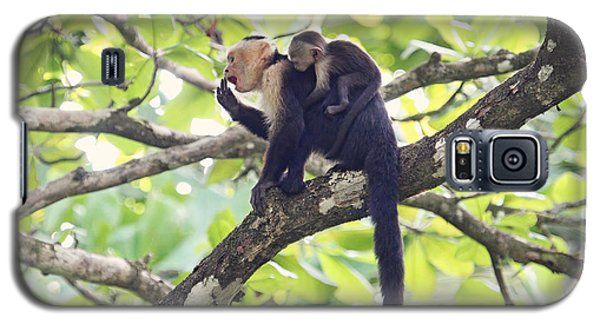Galaxy S5 Case featuring the photograph Mother And Baby Capuchin Monkeys by Peggy Collins