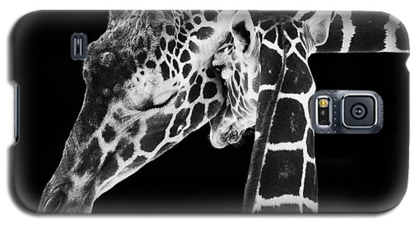 Mother And Baby Giraffe Galaxy S5 Case by Adam Romanowicz