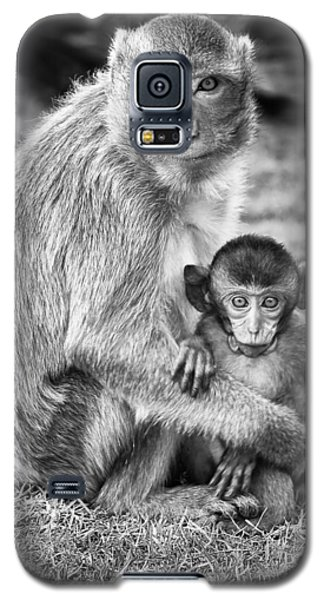 Wildlife Galaxy S5 Case - Mother And Baby Monkey Black And White by Adam Romanowicz