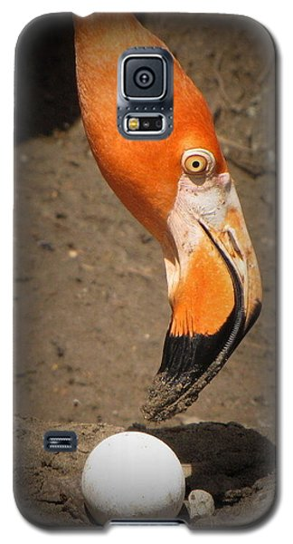 Galaxy S5 Case featuring the photograph Mother And Child by Beth Vincent