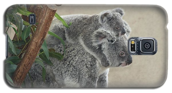 Galaxy S5 Case featuring the photograph Mother And Child Koalas by John Telfer