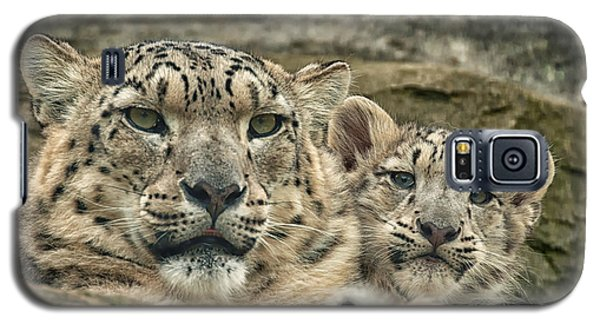 Mother And Cub Galaxy S5 Case