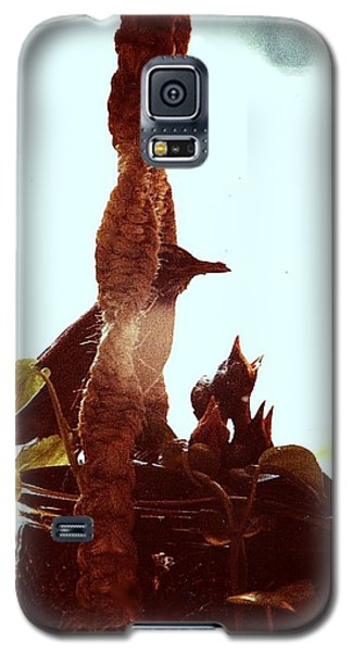Galaxy S5 Case featuring the photograph Mother Robin Tending To Her Young by James McAdams