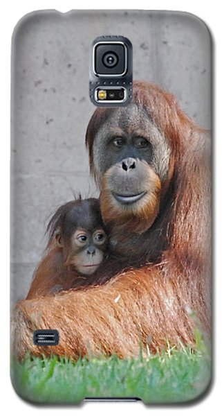 Galaxy S5 Case featuring the photograph Mothers Care by Kathy Gibbons