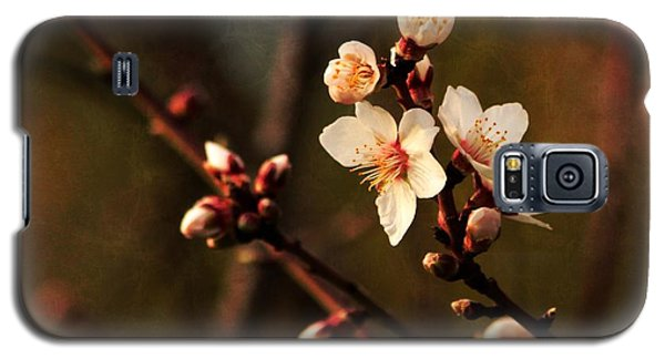Galaxy S5 Case featuring the photograph Mother's Spring Blossoms by Marjorie Imbeau