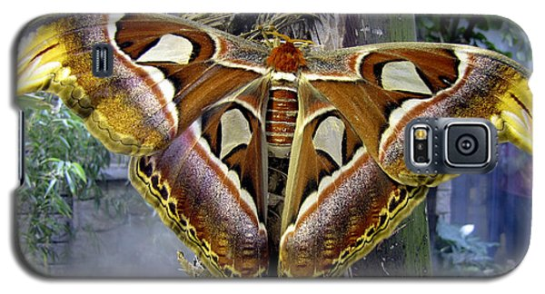 Atlas Moth Galaxy S5 Case