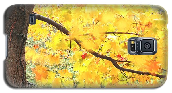 Galaxy S5 Case featuring the photograph Motion Of Autumn Leaves On Tree by Gary Slawsky