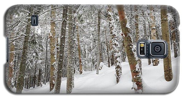 Mount Jim - Kinsman Notch New Hampshire Usa  Galaxy S5 Case