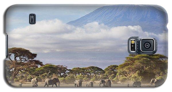 Mount Kilimanjaro Amboseli  Galaxy S5 Case