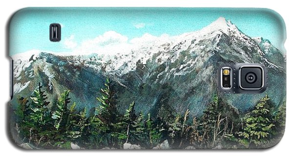 Mount Washington Galaxy S5 Case