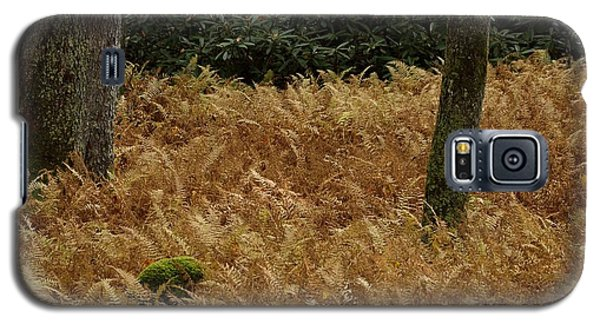 Galaxy S5 Case featuring the photograph Mountain Carpet by Randy Bodkins