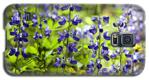 Galaxy S5 Case featuring the photograph Mountain Flowers by Kjirsten Collier