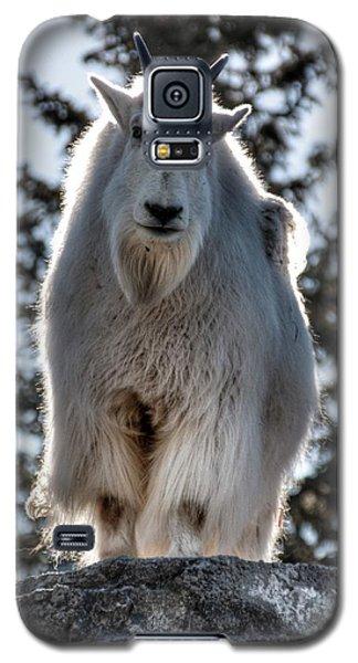 Mountain Goat Galaxy S5 Case