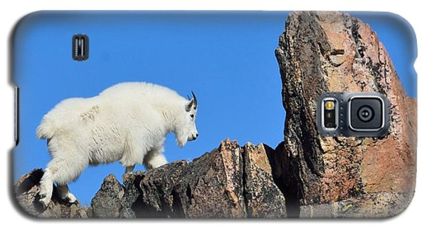 Mountain Goat Galaxy S5 Case
