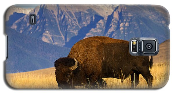 Mountain Grass Galaxy S5 Case by Aaron Whittemore