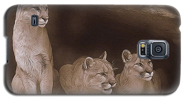 Mountain Lion Trio On Alert Galaxy S5 Case by Diane Alexander