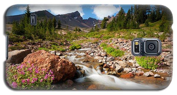 Mountain Runoff Galaxy S5 Case