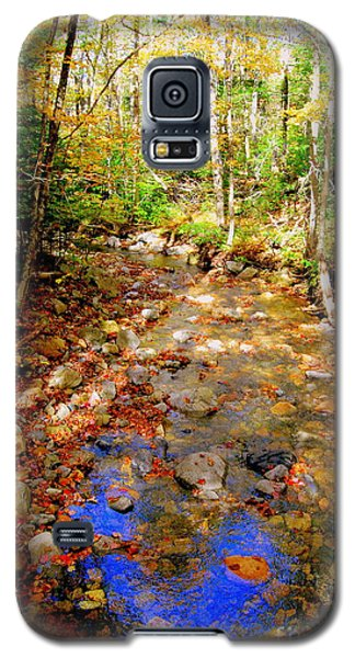 Mountain Stream Covered With Fall Leaves Galaxy S5 Case
