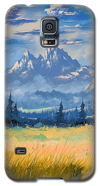 Mountain Valley Galaxy S5 Case by Richard Faulkner