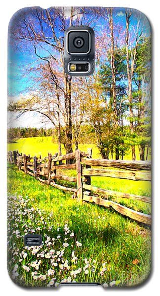 Mountain Wildflowers In The Blue Ridge II Galaxy S5 Case