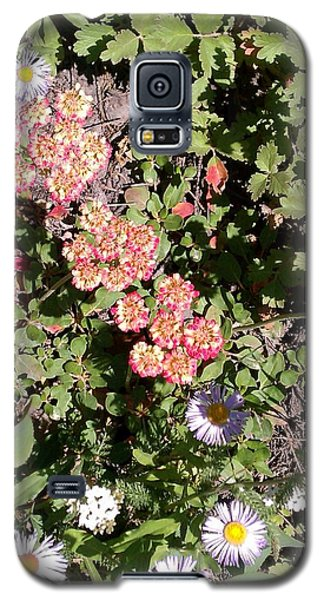 Galaxy S5 Case featuring the photograph Mountain Wildflowers by Fortunate Findings Shirley Dickerson
