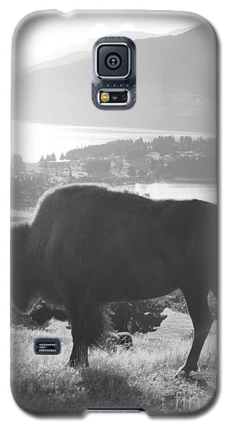 Bison Galaxy S5 Case - Mountain Wildlife by Pixel  Chimp