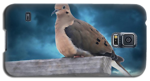 Galaxy S5 Case featuring the photograph Mourning Dove Blue Sky by Marjorie Imbeau