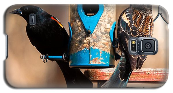Mr. And Mrs. Red Winged Blackbird Galaxy S5 Case by Robert L Jackson